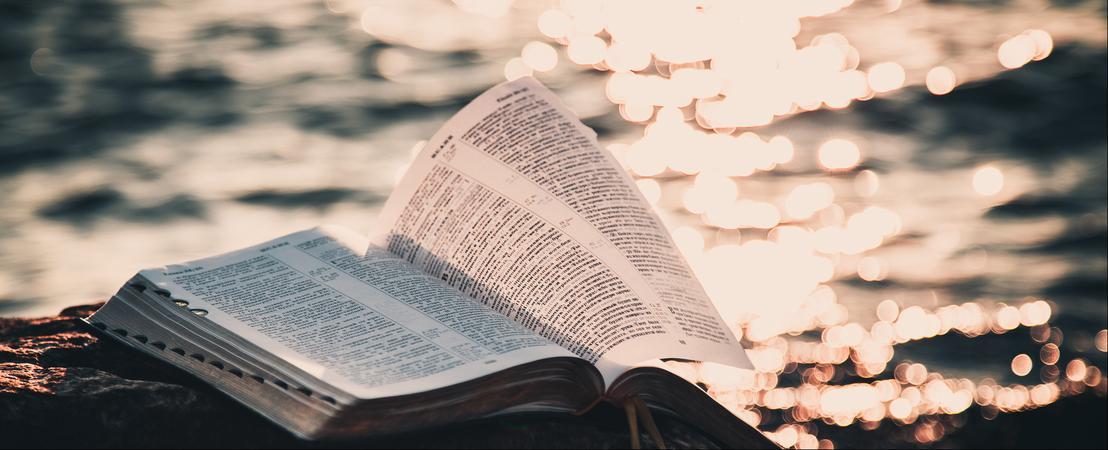 Pour réussir dans vos entreprises, étudiez la Bible