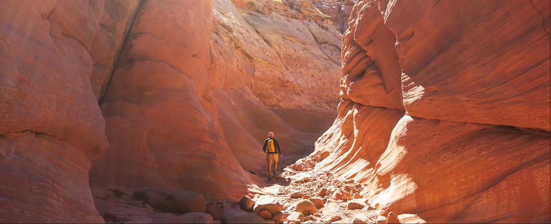 Appréciez votre temps dans le désert