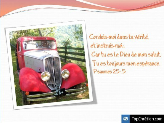 Psaumes 25:5