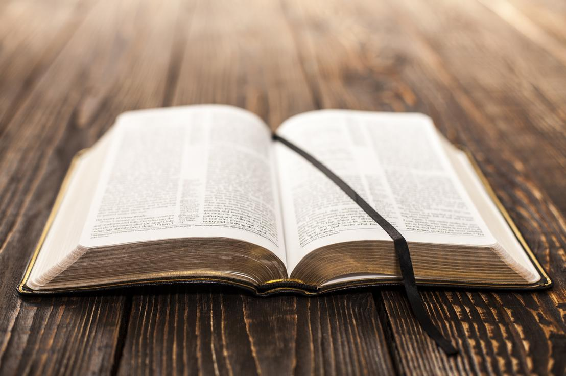 Résultats de recherche d'images pour «Tu as les paroles de la vie éternelle. Alléluia.»
