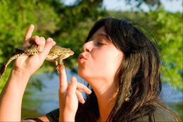 Notre travail…?  Embrasser des grenouilles !