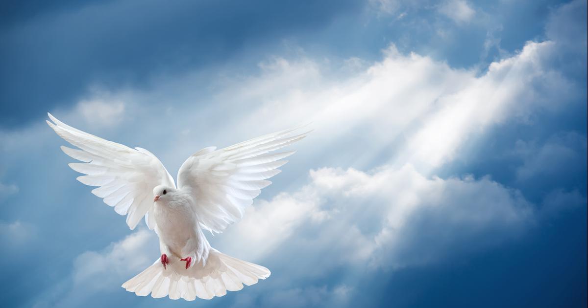 Le Saint-Esprit pourvoit à nos besoins