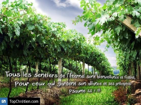 Psaume 25:10