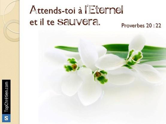 Proverbes 20:22
