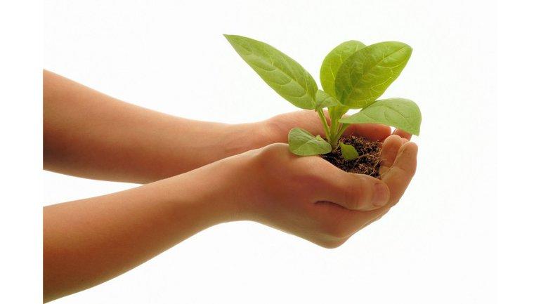 Attendez de Dieu qu'il multiplie votre semence