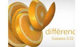 Différence - La vie de l'Esprit (1)
