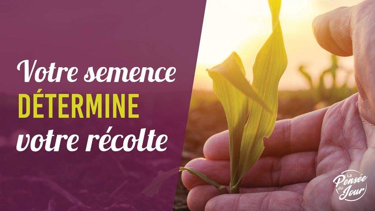 Votre semence détermine votre récolte