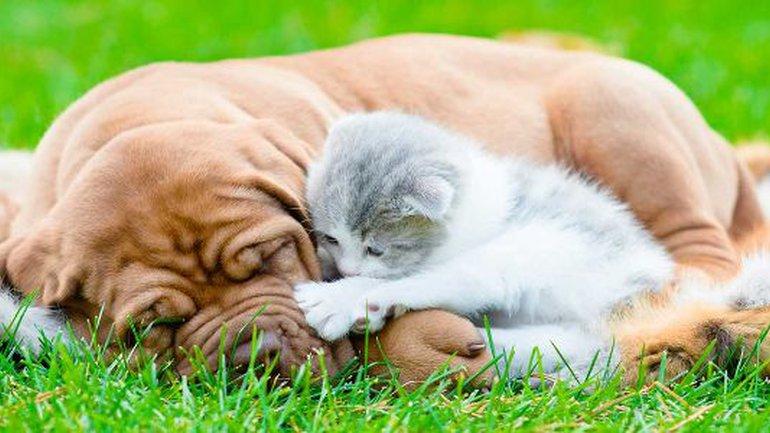 Supportez-vous les uns les autres… Et pardonnez-vous aussi !