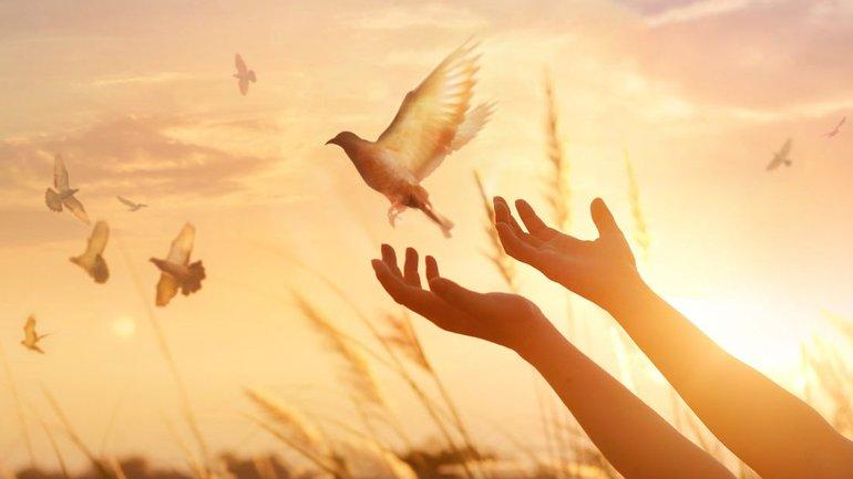 Avez-vous souscrit aux avantages divins ?