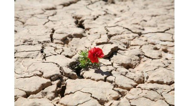 Dieu a placé une montagne dans votre désert