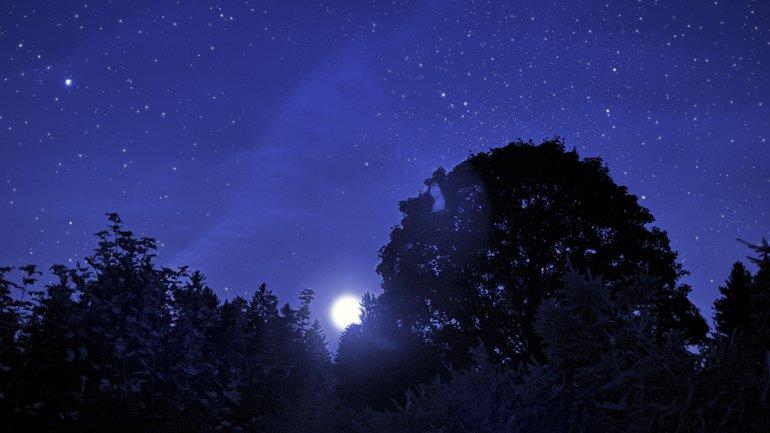Le regard dans la nuit