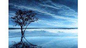 Les sept miracles de l'évangile de Jean : Les noces de Cana