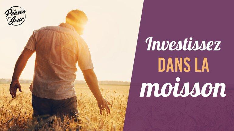 Investissez dans la moisson !