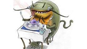 La supériorité du poisson-chat