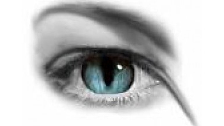 L'amour a les yeux ouverts