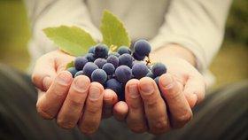 Porter du fruit pour Dieu