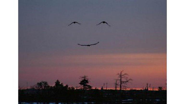 Le sourire de Dieu