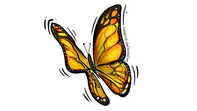 La chasse au papillon de rêve