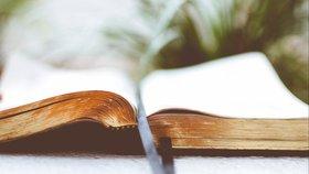 Nouveau Testament et Psaumes en 1 an