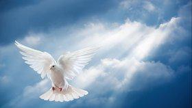 L'Esprit du Seigneur est avec nous et en nous