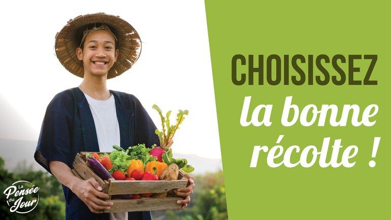 Choisissez la bonne récolte !