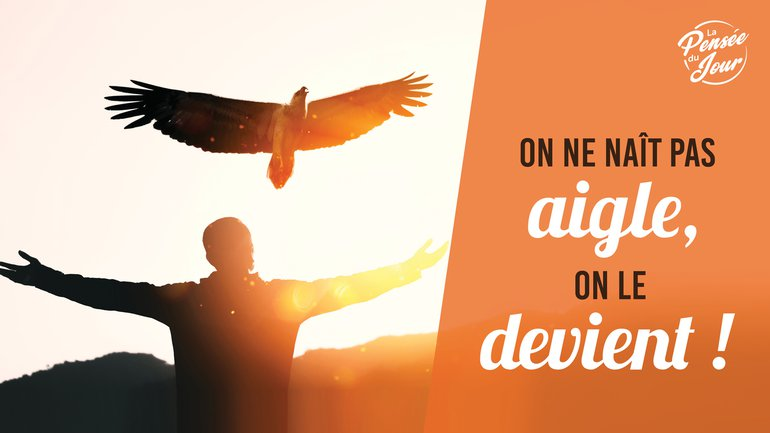 On ne naît pas aigle, on le devient !