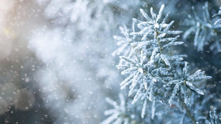 Les hivers de nos vies