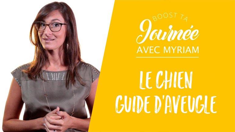Booste ta journée - Myriam Mancebo - Le chien guide d'aveugle