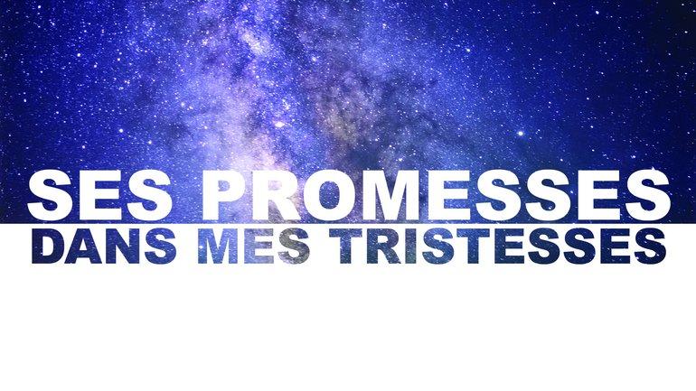 SES PROMESSES DANS MES TRISTESSES