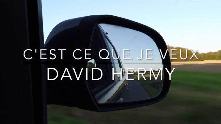 """David Hermy / """"C'est ce que je veux"""""""