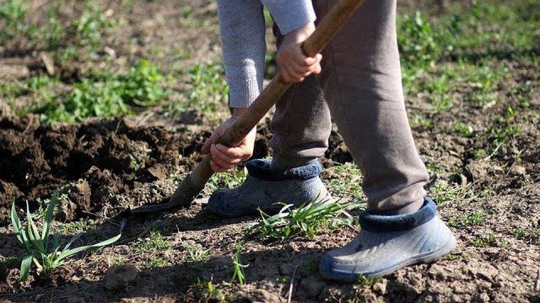 Appelés à creuser !